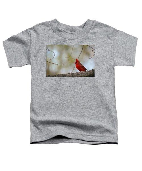 Pop Of Color Toddler T-Shirt