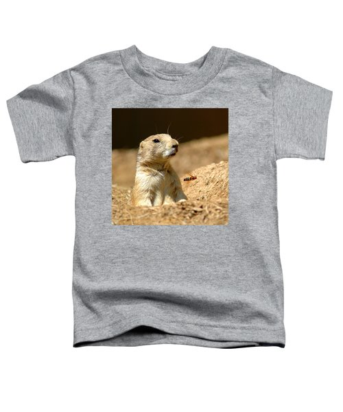 Prarie Dog Bee Alert Toddler T-Shirt by LeeAnn McLaneGoetz McLaneGoetzStudioLLCcom