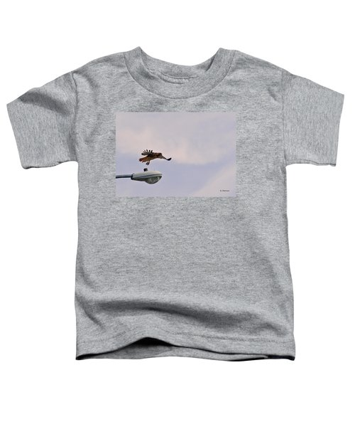 Red-tailed Hawk In Flight Toddler T-Shirt