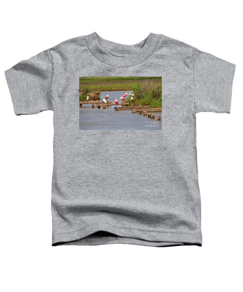 Roseate Spoonbills And Snowy Egrets Toddler T-Shirt by Louise Heusinkveld