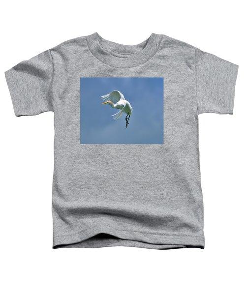 Sky Dancing Toddler T-Shirt