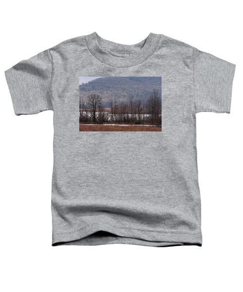Snow Geese Rising Toddler T-Shirt