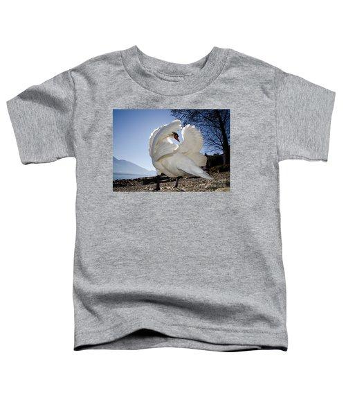 Swan In Backlight Toddler T-Shirt