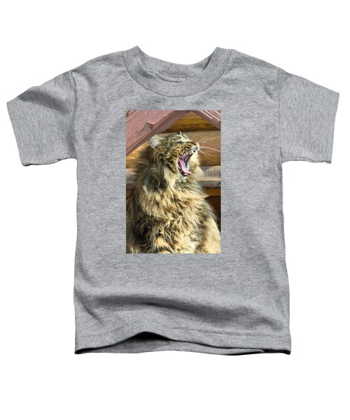 The Cat Who Loves To Sing Toddler T-Shirt