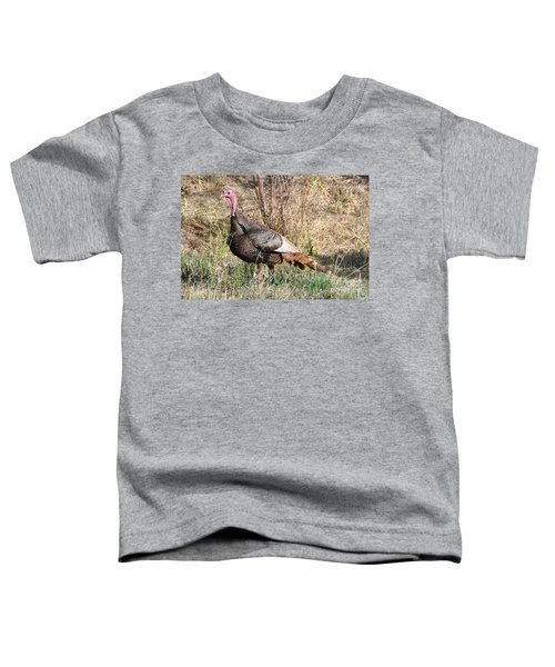 Turkey In The Straw Toddler T-Shirt