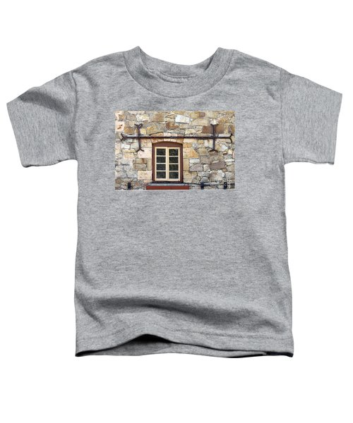 Window Into The Past Toddler T-Shirt