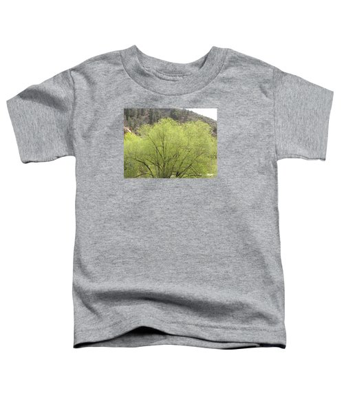 Tree Ute Pass Hwy 24 Cos Co Toddler T-Shirt