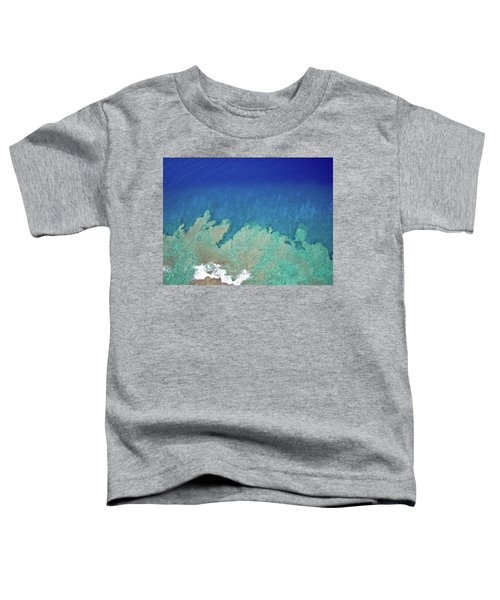 Abstract Aerial Reef Toddler T-Shirt