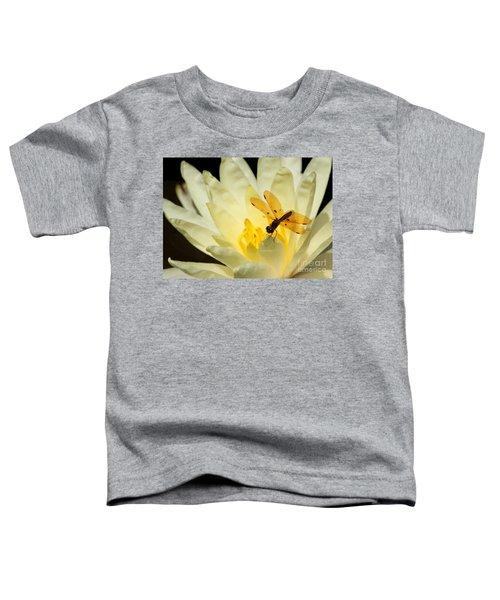 Amber Dragonfly Dancer 2 Toddler T-Shirt