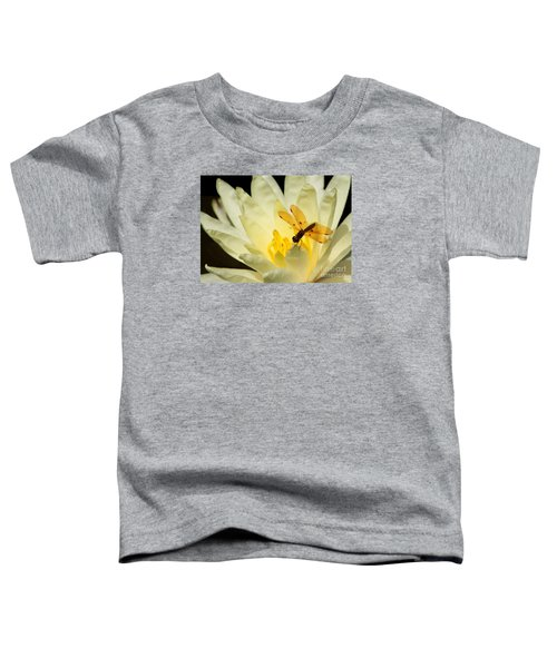 Amber Dragonfly Dancer 2 Toddler T-Shirt