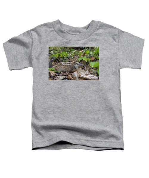American Woodcock Chick Toddler T-Shirt