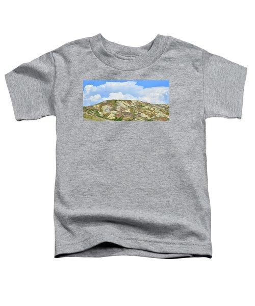Badlands In Wyoming Toddler T-Shirt