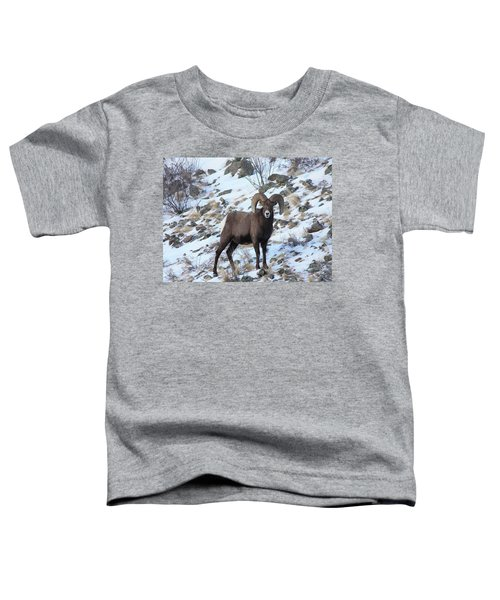 Bighorn7 Toddler T-Shirt