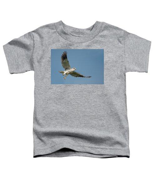 Black-shouldered Kite Elanus Axillaris Toddler T-Shirt