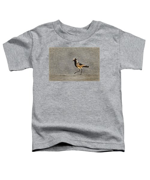 Black-winged Lapwing Art Toddler T-Shirt by Kay Brewer