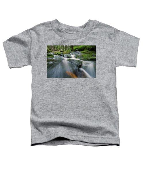 Bode, Harz Toddler T-Shirt
