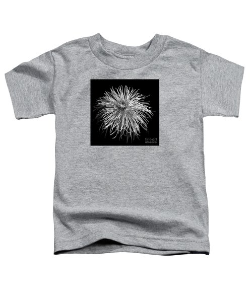 Chrysanthemum 'pink Splendor' Toddler T-Shirt