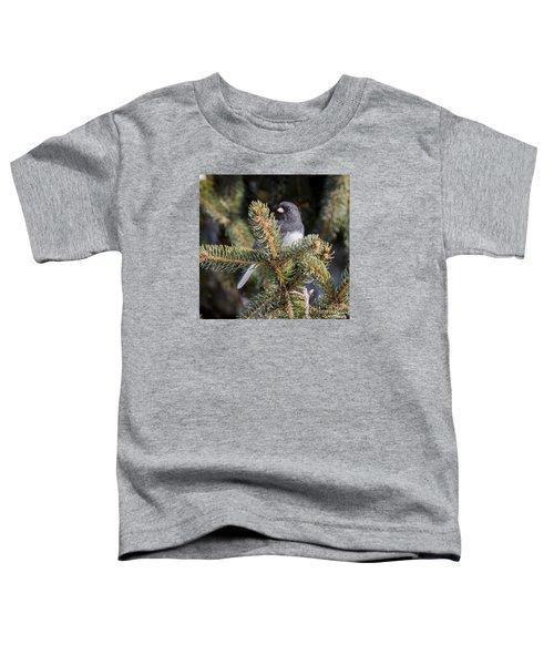 Dark-eyed Junco Toddler T-Shirt by Ricky L Jones
