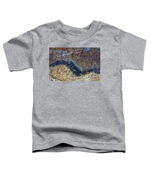 Earth Portrait 000-205 Toddler T-Shirt