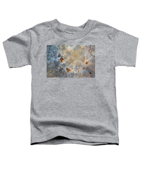 Earth Portrait 286 Toddler T-Shirt