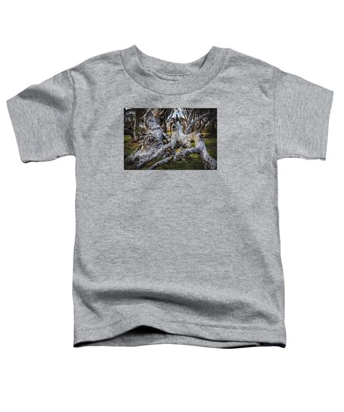Fallen From Grace Toddler T-Shirt