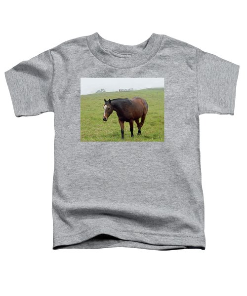 Horse In The Fog Toddler T-Shirt