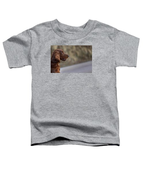 Irish Setter Toddler T-Shirt