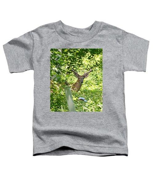 Looking At You Toddler T-Shirt