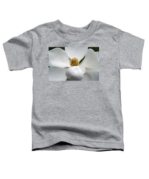 Magnolia Flower Toddler T-Shirt