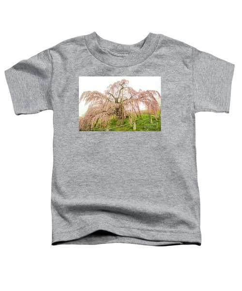 Miharu Takizakura Weeping Cherry02 Toddler T-Shirt