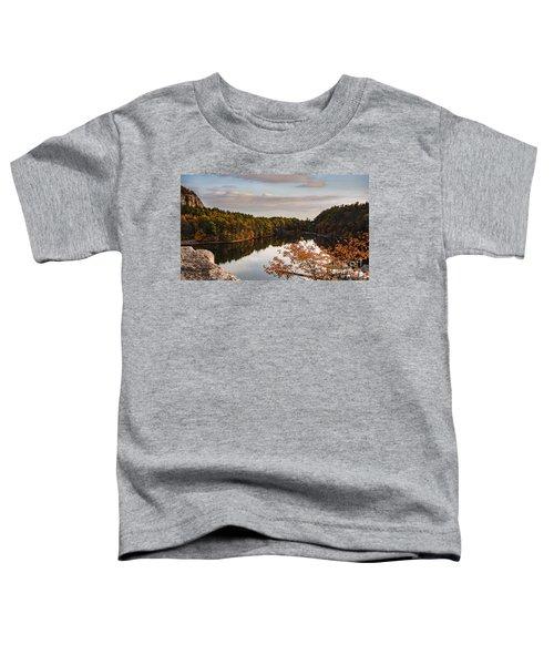 Mohonk Mountain House Lake Toddler T-Shirt