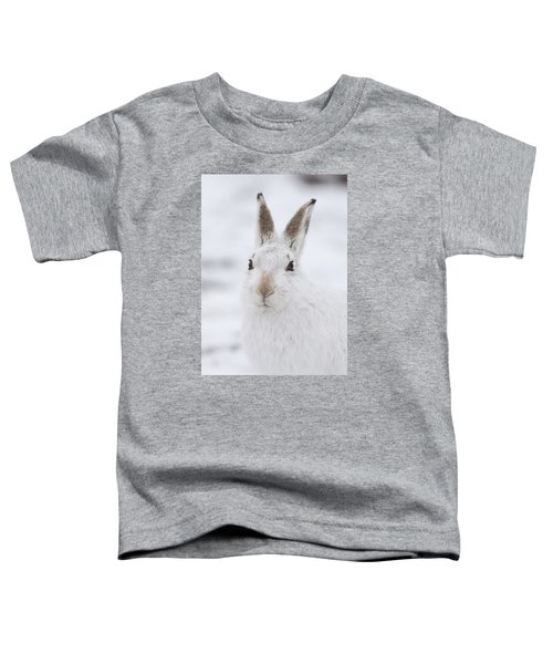 Mountain Hare In The Snow - Lepus Timidus  #1 Toddler T-Shirt