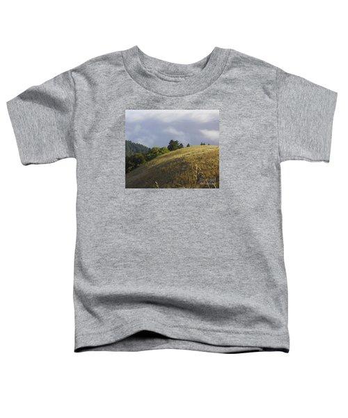 Mt. Tamalpais Study #1 Toddler T-Shirt