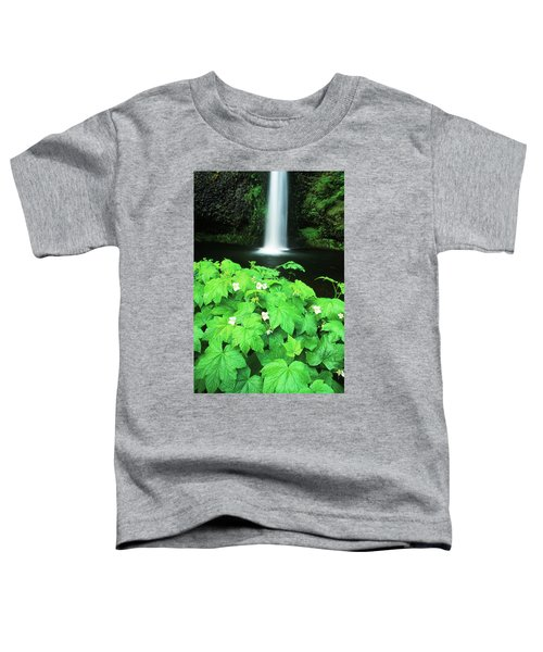 Multnoma Falls Toddler T-Shirt