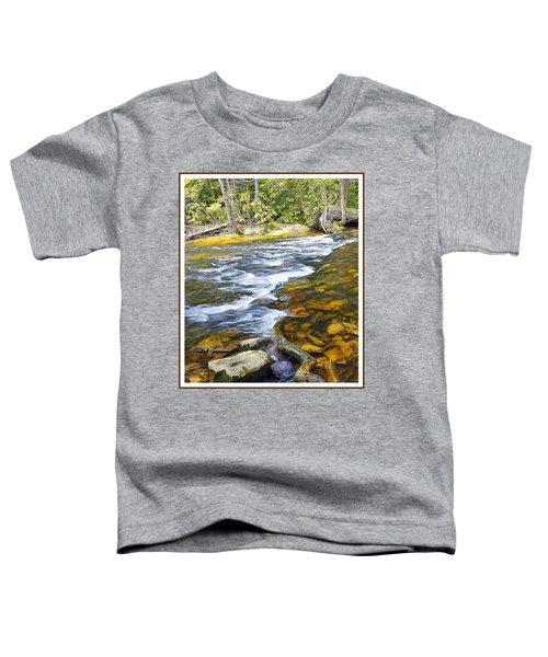 Pennsylvania Mountain Stream Toddler T-Shirt