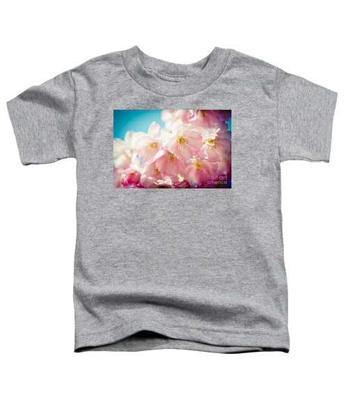 Pink Cherry Blossoms Closeup Toddler T-Shirt