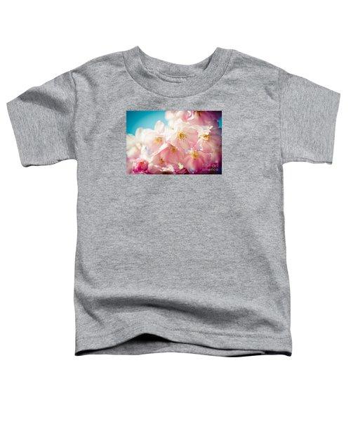 Pink Cherry Blossoms Closeup Toddler T-Shirt