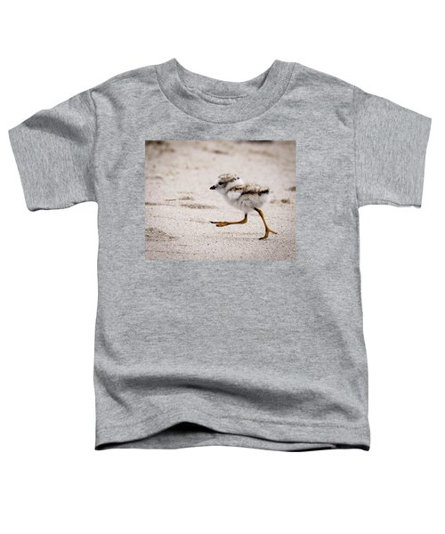 Piping Plover Chick Toddler T-Shirt