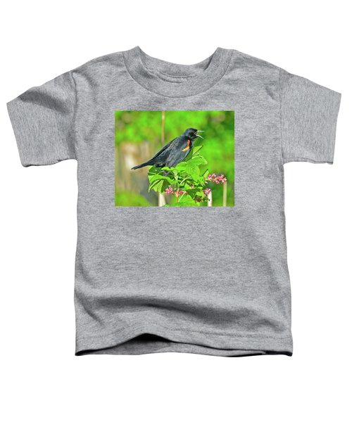 Red-winged Blackbird Toddler T-Shirt