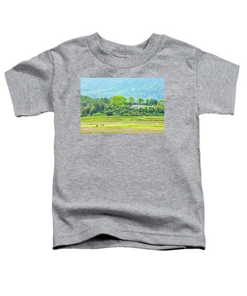 Rural Scenery In Spring Toddler T-Shirt