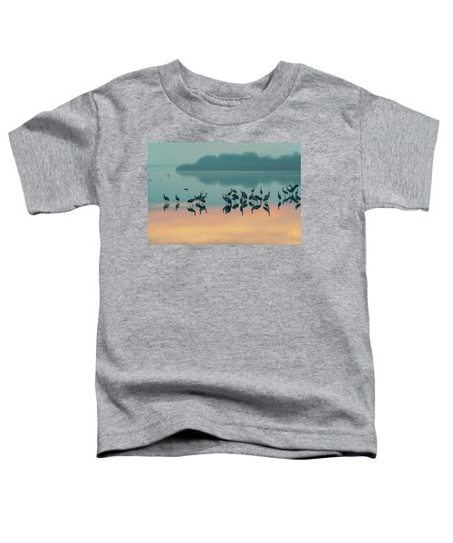 Sunrise Over The Hula Valley Toddler T-Shirt by Dubi Roman