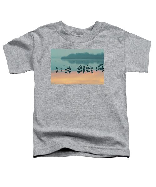 Sunrise Over The Hula Valley Toddler T-Shirt