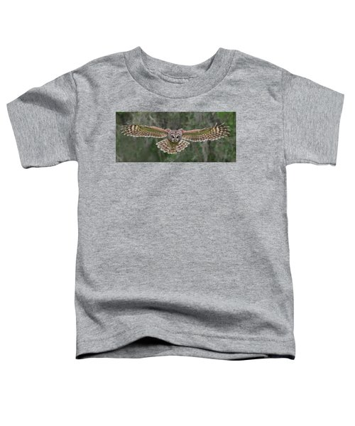 The Approach. Toddler T-Shirt