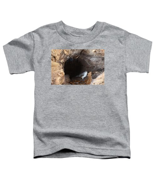 Tufted Titmouse In A Log Toddler T-Shirt by Ted Kinsman
