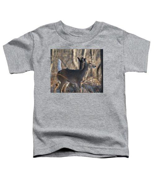 Wild Deer Toddler T-Shirt