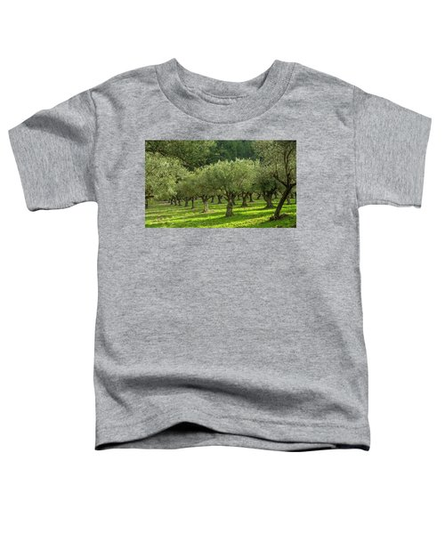 Young Olive Grove Toddler T-Shirt