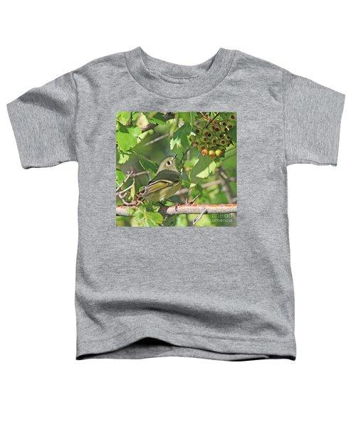 Ruby-crowned Kinglet Toddler T-Shirt