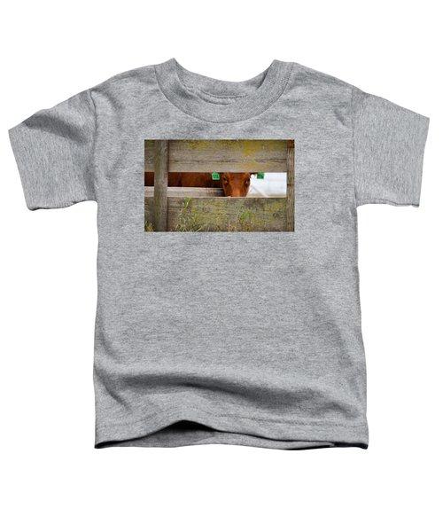 1206 Toddler T-Shirt