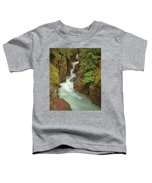 1m8115 Avalanche Gorge Mt Toddler T-Shirt