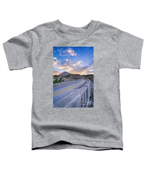 Donner Memorial Bridge Toddler T-Shirt